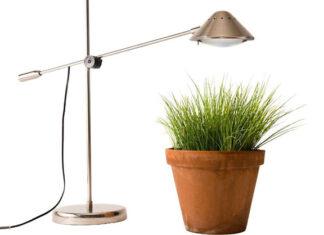 Oświetlenie roślin